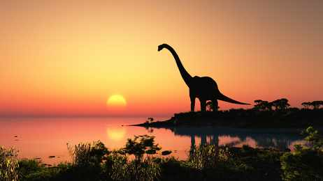 Top 5 Largest Known Dinosaurs