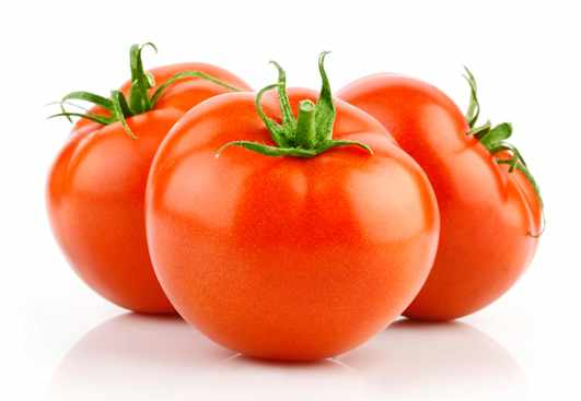 Top 5 Tomato Producing Countries