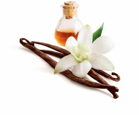Top 5 Vanilla Producing Countries