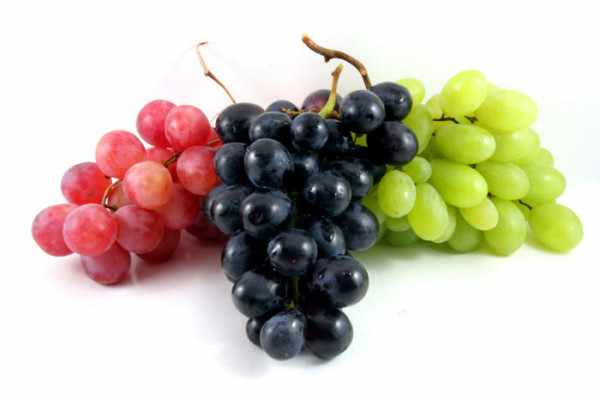 Grape Producing Countries