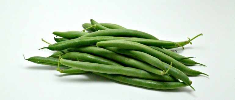String Bean Producing Countries