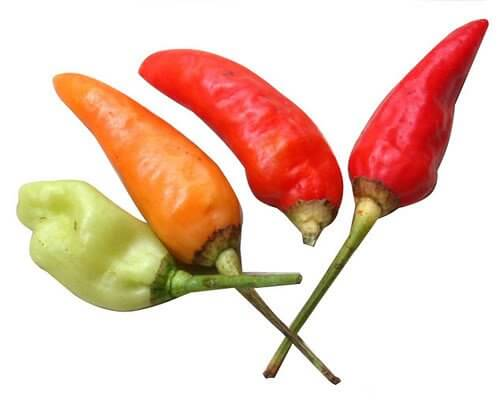 Hottest Chili Peppers on the Scoville Scale